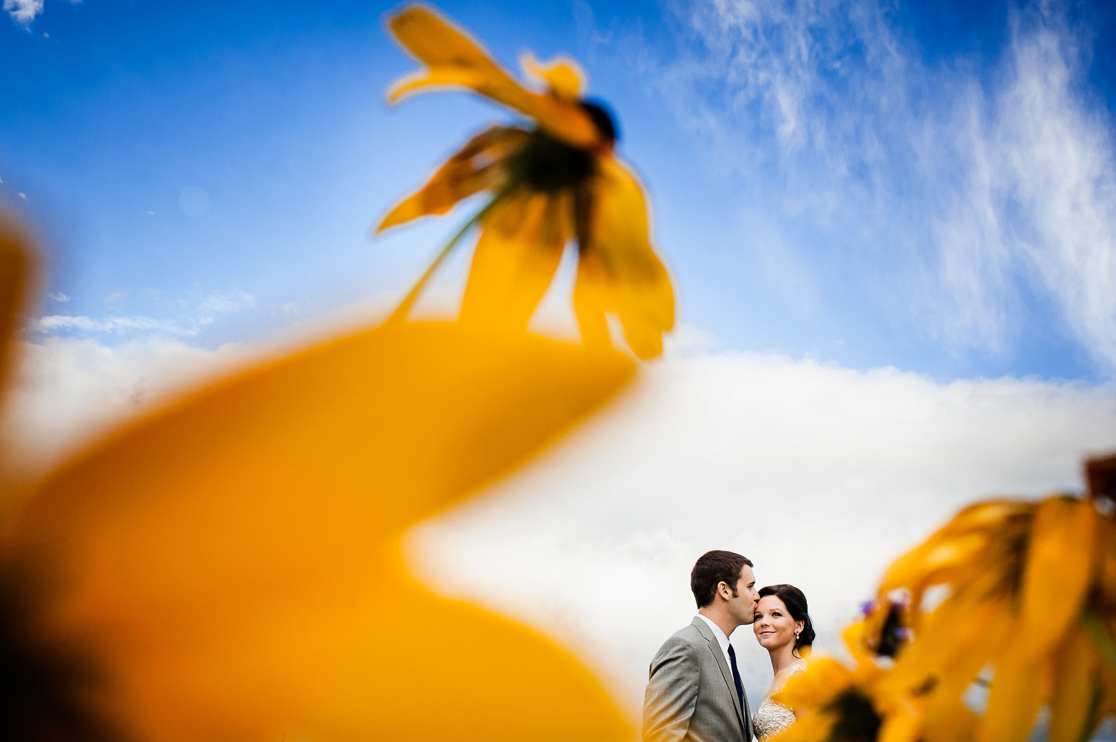Stowe wedding;Trapp Family Lodge Wedding;Vermont wedding photographers;daisy wedding photo